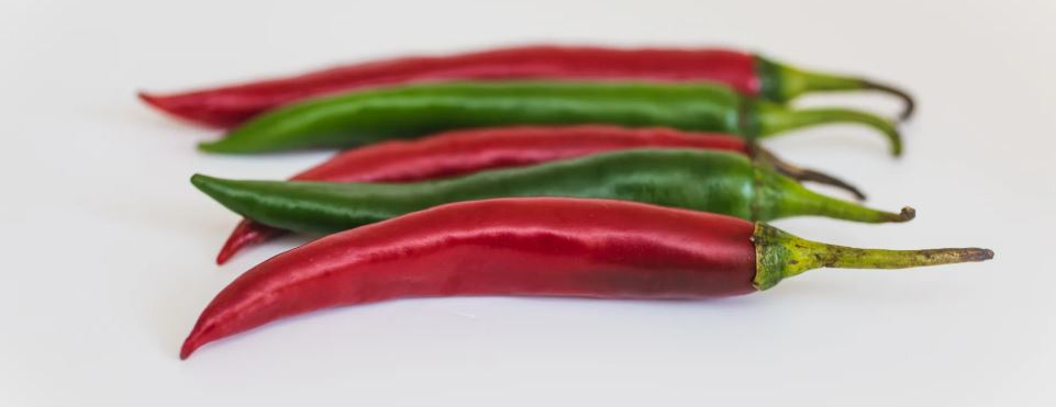 worms do not eat hot peppers