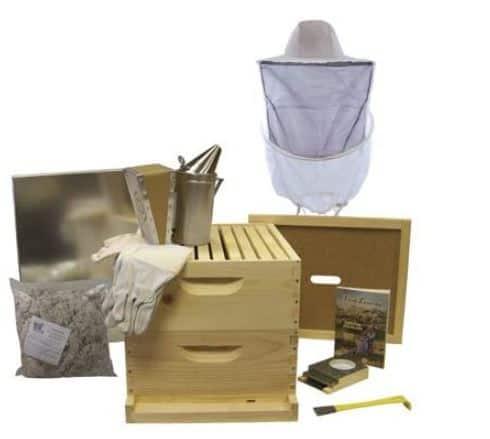 Best Beekeeping Starter Kits