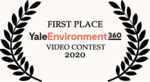 yale environment 360 video awards
