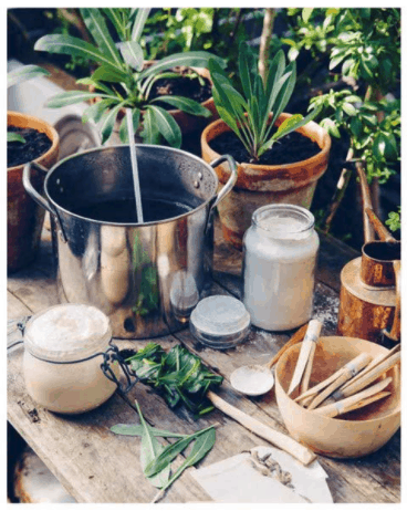 wild dying ingredients