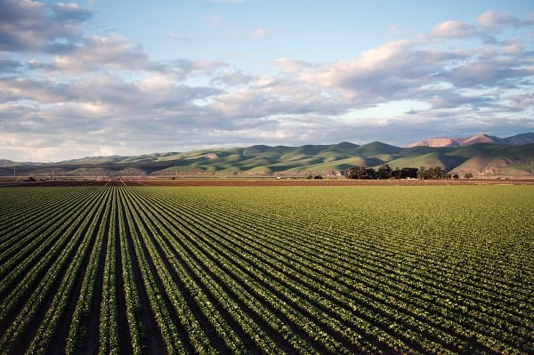 regenerative agriculture primer