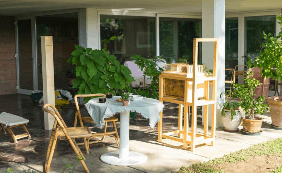 suburban beekeeping