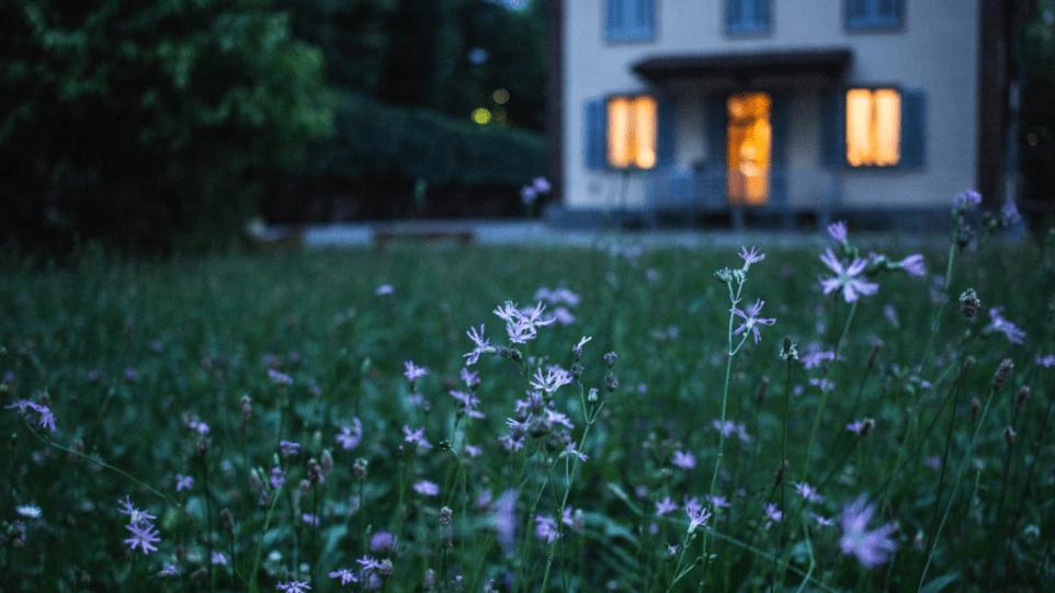 edible lawns in suburbs