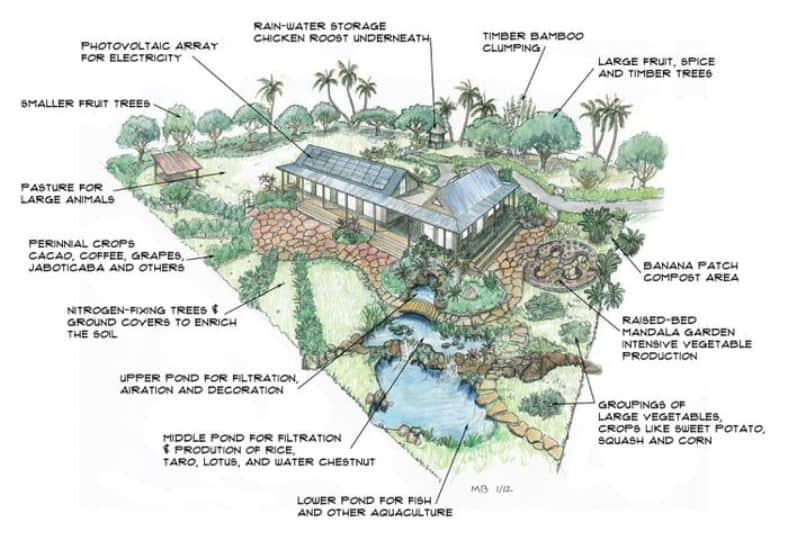 the self sufficient home acre