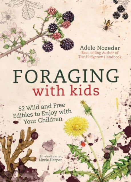 foraging with kids book cover