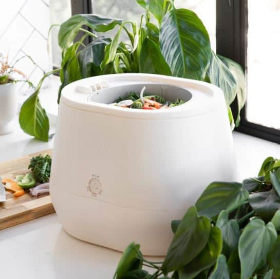 lomi composter