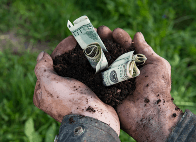 Can Homesteading Be Profitable?